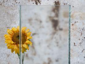 Wzory szkła podstawowe